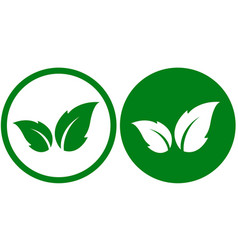 Green icon with leaf vector