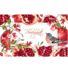 pomegranate branch bird banner vector image vector image