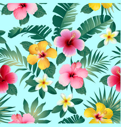 tropical flowers and leaves on dark gray vector image
