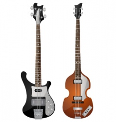 bass guitar vector image vector image