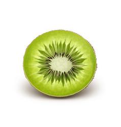 Half cut kiwi vector