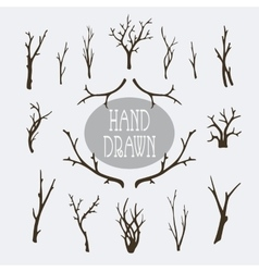 Hand drawn branches and trees vector image