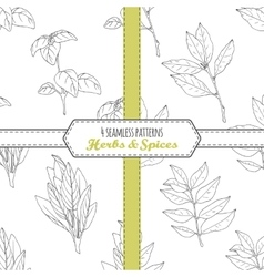Hand drawn seamless patterns collection with sage vector