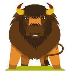 Buffalo wild animals cavicorn mammals vector