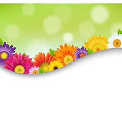 Colorful gerbers flowers poster vector