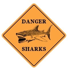 Danger sharks vector image