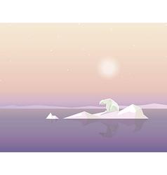 Polar bear on ice cap vector