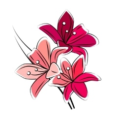 Stylized red lily isolated vector