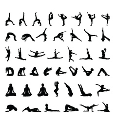 fitness and yoga vector image