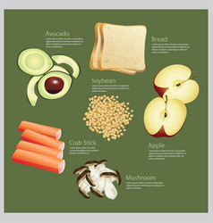 ingredient food vector image