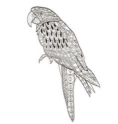 parrot tropical bird vector image