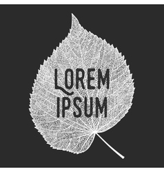 Skeletonized leaf with text vector