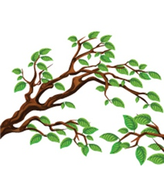 Leaves on tree vector image