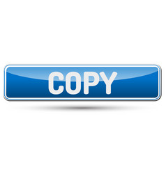 Copy - abstract beautiful button with text vector
