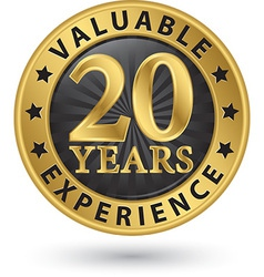 20 years valuable experience gold label vector image
