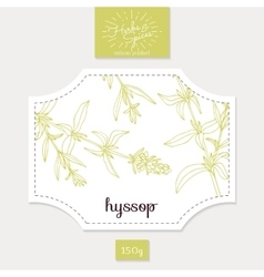 Product sticker with hand drawn hyssop leaves vector