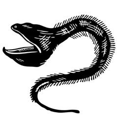 opistognathidae jawfish vector image