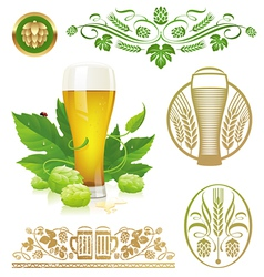 set - beer hop and brewing vector image vector image