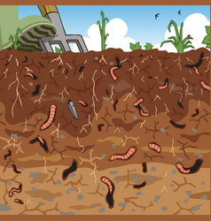 soil vector image vector image