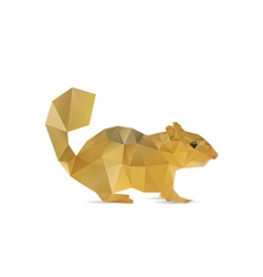 Abstract squirrel vector