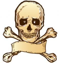 Skull crossbones banner vector