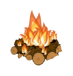 wood burning bright campfire isolated on white vector image