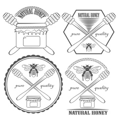 Natural honey vector