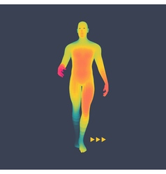Man stands on his feet 3d model of man human body vector