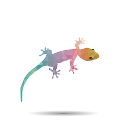 Abstract geckos vector image