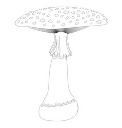 Fly agaric mushroom in contour isolated on white vector