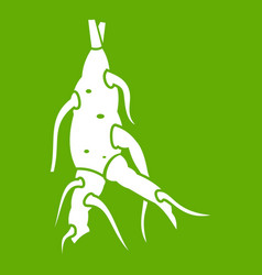 ginseng panax root icon green vector image