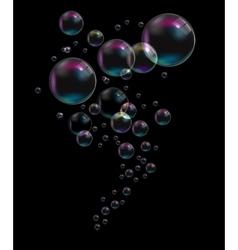 Transparent Bubbles on Black Background vector image vector image
