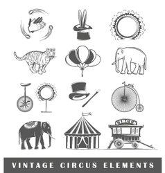 Set of elements of the circus vector