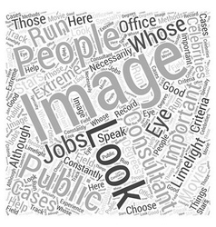 What to Look for in Image Consultants Word Cloud vector image vector image