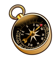 ancient compass in cartoon style vector image