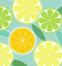 citrus background vector image vector image
