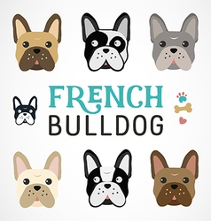 Colorful french bulldog collection vector