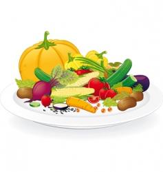 vegan plate vector image
