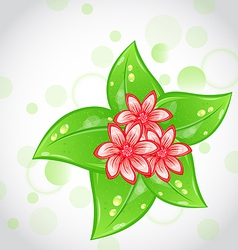 Spring background with flowers and leaves vector image vector image