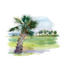 Watercolor palm alley vector