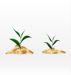 Growing plant on coin money for finance and vector