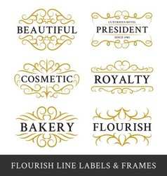 Set of flourish calligraphy frames design vector image