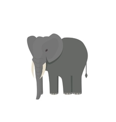 Cute little african elephant isolated on white vector image vector image