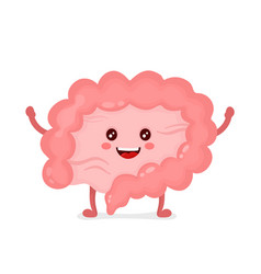 strong healthy happy intestine character vector image vector image