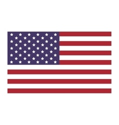 United states flag icon flat vector