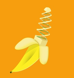 Banana modified gmo genetically chromosome vector