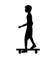 skate board extreme sport vector image