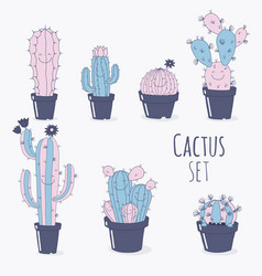 cactus symbols vector image
