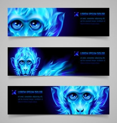 Monkey fire banners vector image vector image