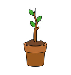 Plant sprout in pot icon image vector